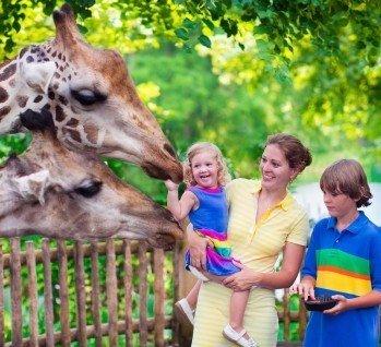 Freizeitpark Kurztrips, Quelle: FamVeld/istockphoto
