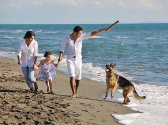 Glückliche Familie mit Hund am Strand spielen