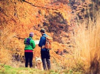 Paar Wandern im Herbst Wald
