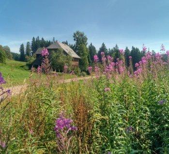 Bad Wildbad, Quelle: fkienas/istockphoto