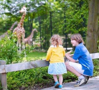 Tierpark, Quelle: FamVeld/istockphoto