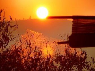 Dschungel-Baumhaus bei Sonnenuntergang