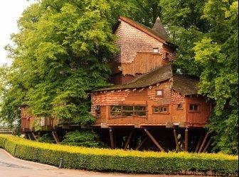 Alnwick Garden Baumhaus