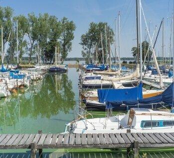 Ammerland, Quelle: TeQui0/ istockphoto