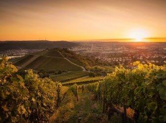 Sonnenuntergang und Wein