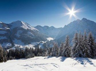 Winter Sonnenschein