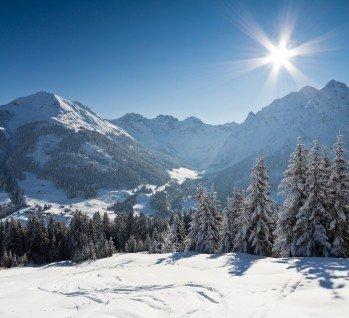 Bayerischer Wald, Quelle: Christoph Dietrich/ istockphoto