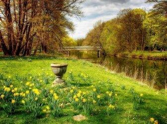 Braunschweiger Löwe, Burg Dankwarderode und das Rathaus von Braunschweig