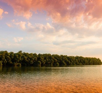 Donauregion, Quelle: Varsescu/istockphoto