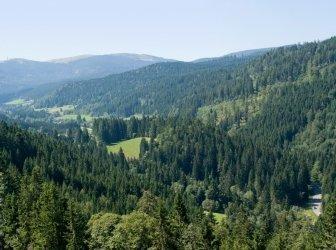 Idyllische Landschaft Schwarzwald