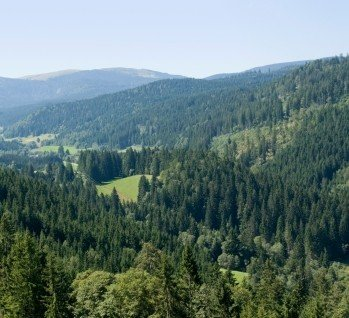 Frankenalb, Quelle: Achim Prill/istockphoto