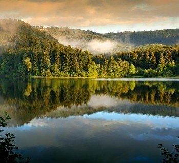 Harz, Quelle: FotoGrafas/ istockphoto