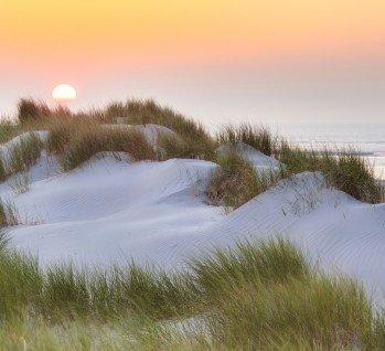 Insel Baltrum, Quelle: studioworxx/istockphoto