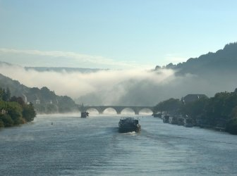 Nebligen Neckar in Heidelberg