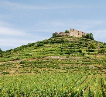 Markgräfler Land, Quelle: Schloss auf einem Weingut Stockfoto