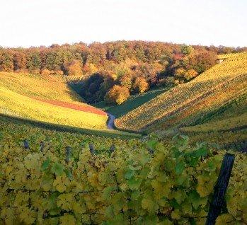 Oberschwaben, Quelle:  itakefotos4u / istockphoto