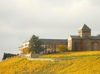 Neues Weinrot