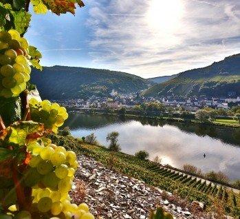 Rheinland-Pfalz, Quelle: Mark22/ istockphoto