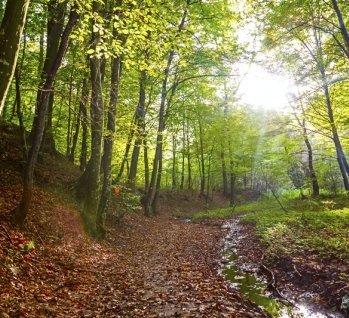 Riesengebirge, Quelle: Kadarjan_Roman / istockphoto