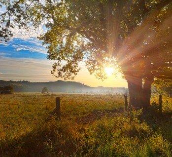 Sauerland, Quelle: studioworxx/ istockphoto