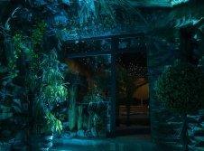 Dschungel-Suite