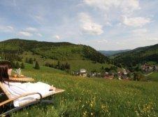 Alpen Wellness