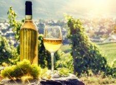 Angebot für Wein- & Kulturfans