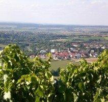 Blick auf Bitzfeld, Quelle: