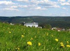Frühling im Thüringer Wald
