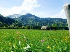 Frühling in Füssen