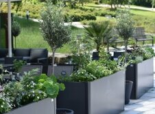 Hotel Am Kurhaus - Terrasse/Außenbereich