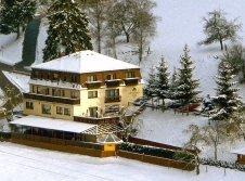 Hotel Grüner Baum im Winter