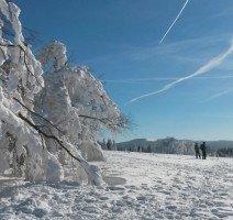 Landschaft, Quelle: (c) Waldhotel am Notschreipass