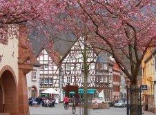 Mittelalterliches Annweiler