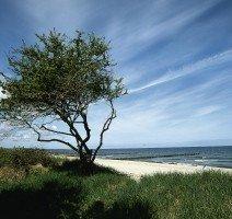Ostseeküste v. VMO, Quelle:
