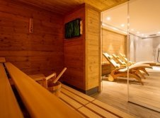 Tannenhaus Sauna