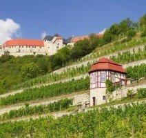 Weinberge, Quelle: (c) Hotel Himmelsscheibe