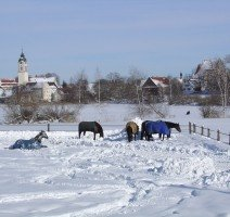 Winter in Kißlegg, Quelle: