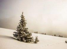 Winterzauber im Werratal