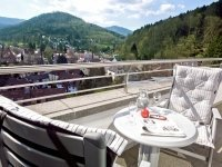 Deluxe EZ, Quelle: (c) Schwarzwald Panorama