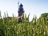 Ferienhaus Ostsee, Quelle: (c) Gutshof Bastorf