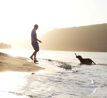 Beste Freunde bei Sonnenuntergang   , Quelle: ©arieliona/istockphoto